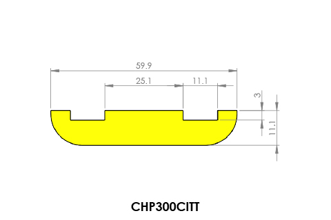 conveyor chain guides